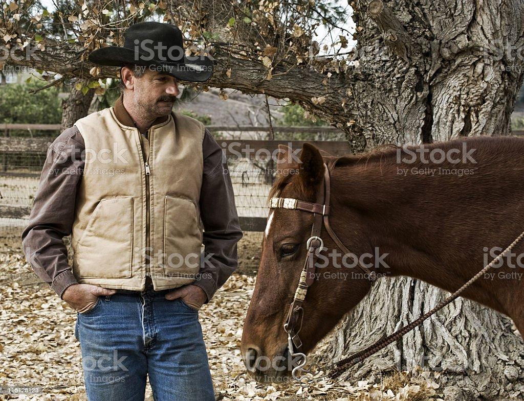 Cowboy and Horse royalty-free stock photo