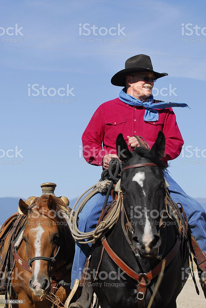 Cowboy and Two Horses stock photo
