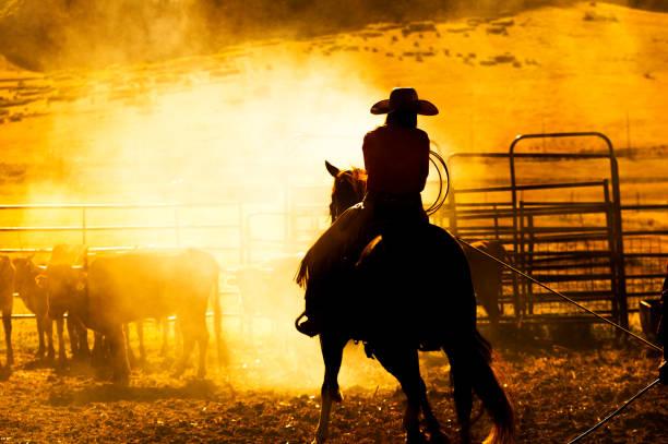Cowboy auf Viehranch in Santaquin Tal während des Sonnenuntergangs in der Nähe von Salt Lake City SLC Utah USA – Foto