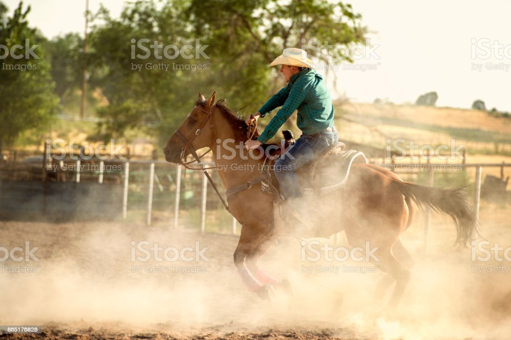 Cowboy Barrel Racing In The Arena At A Local Rodeo stock photo