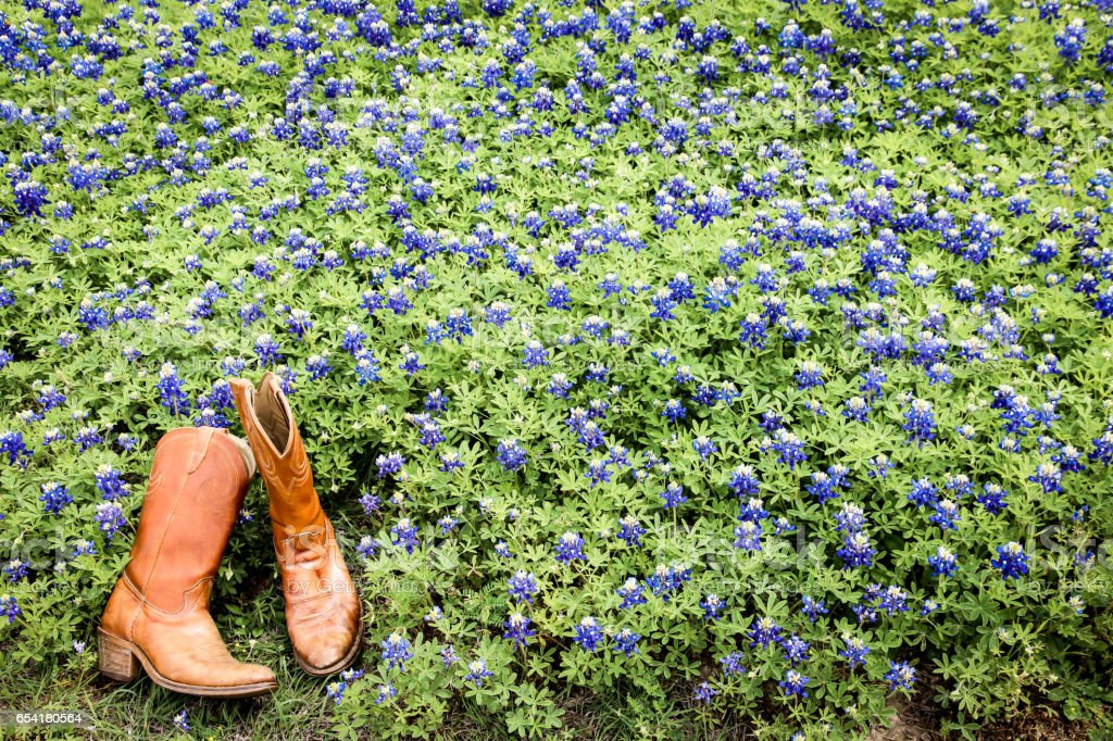 Cowboy boots among the bluebonnets stock photo