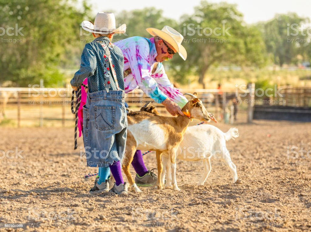 Cowboy clown places a collar on a goat that will be used in a rodeo while a young cowboy clown holds the lead stock photo