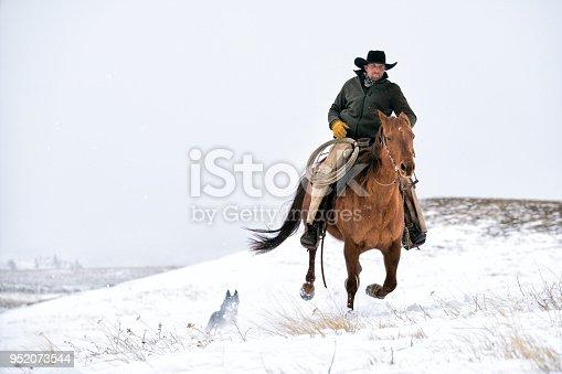 Cowboy riding a quarter horse gallops across a snowy mountain, Livingston,  Montana, USA