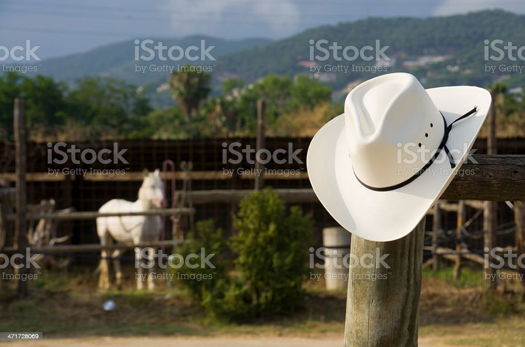 Cowboy hat and a horse royalty-free stock photo