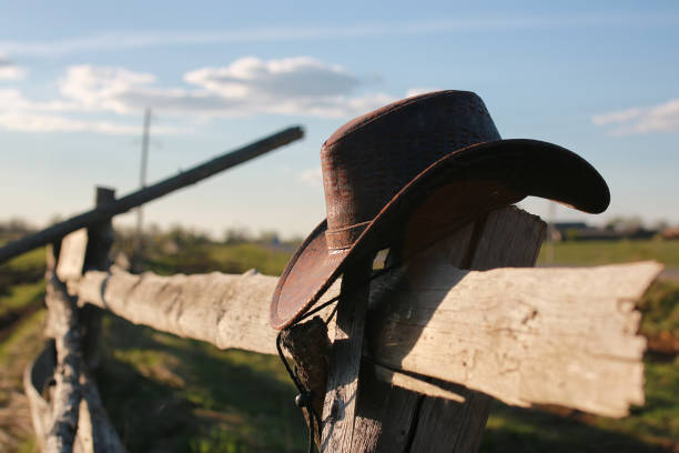 cowboy hat fence handsome and attractive person in the summer in the landscape nature and parks ranch stock pictures, royalty-free photos & images