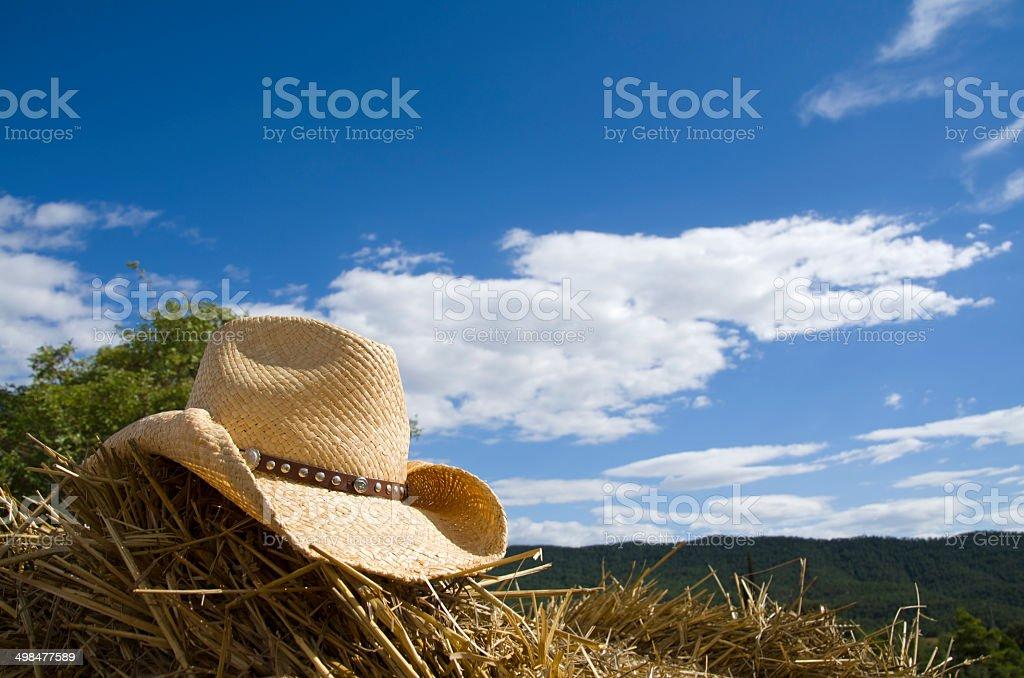 Sombrero de vaquero & heno - foto de stock