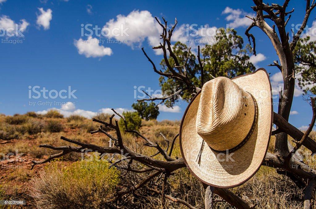 Cowboy hat in a desert - foto de stock