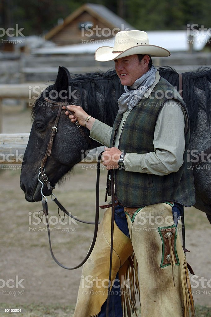 Cowboy Holding Blue Roan Horse stock photo