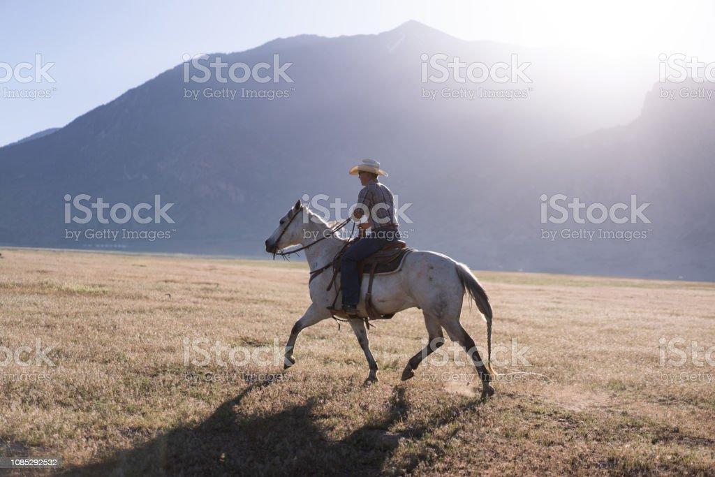 Cowboy Horseback Riding At Sunrise Stock Photo Download Image Now Istock