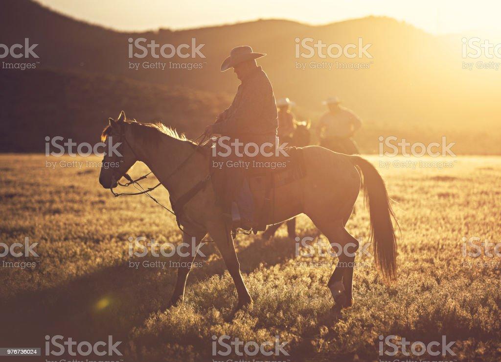 Cowboy Horseback Riding Stock Photo Download Image Now Istock