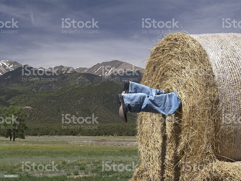 A cowboys legs protrude from a roll of hay. Humor.
