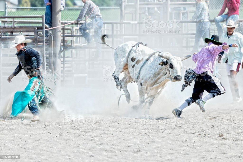 Cowboy hustles off after being thrown by a bull while the rodeo clown keeps him away from him at a rodeo stock photo