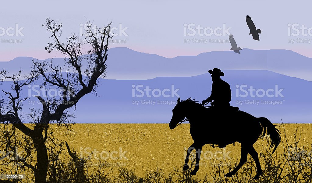 Cowboy in a meadow. stock photo