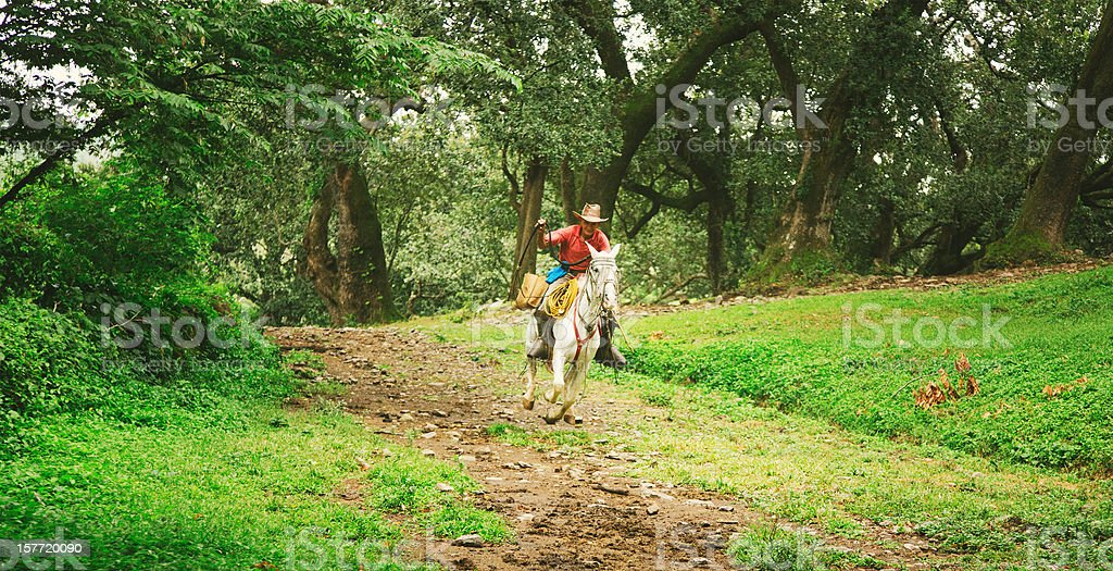 cowboy in costa rica stock photo