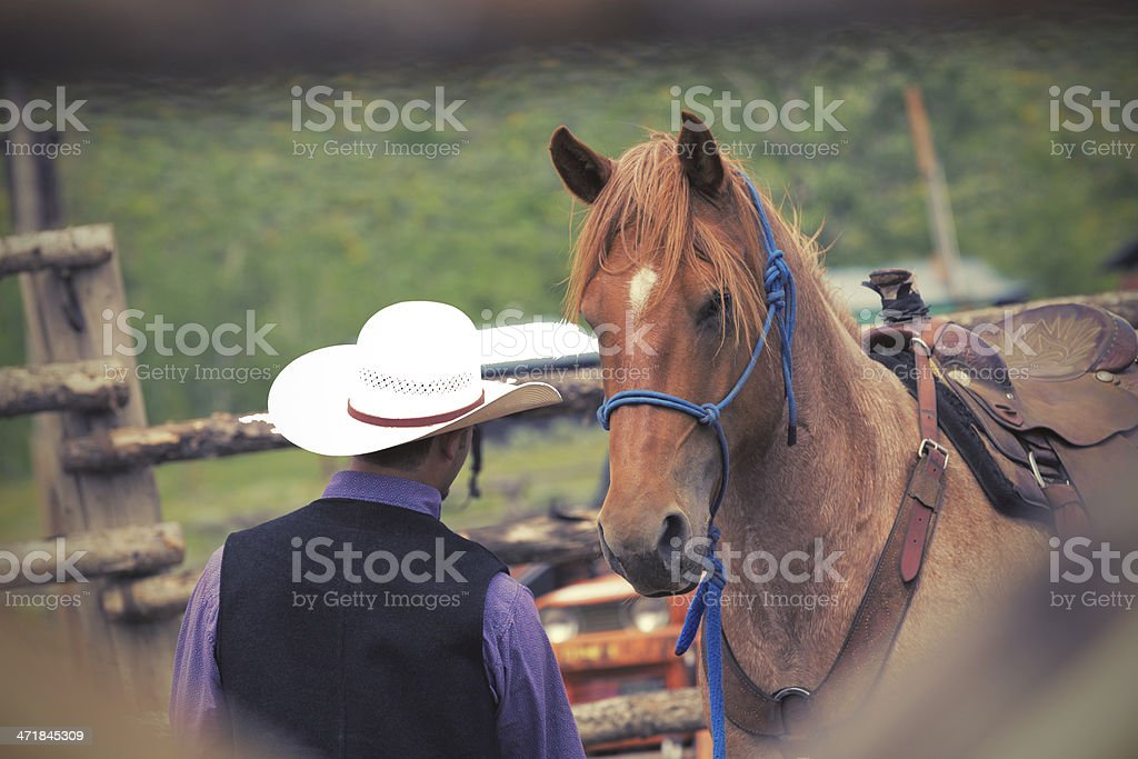 Cowboy leading horse into corral at ranch royalty-free stock photo
