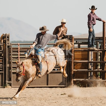 istock Cowboy Lifestyle in Utah 845376278