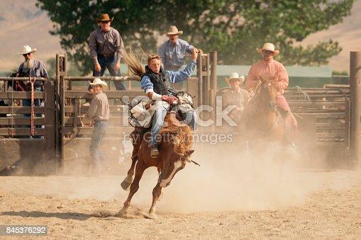 istock Cowboy Lifestyle in Utah 845376292