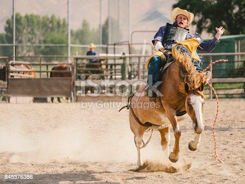 istock Cowboy Lifestyle in Utah 845376386