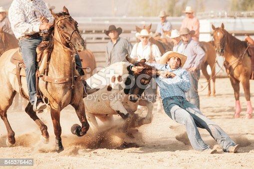 istock Cowboy Lifestyle in Utah 845376442
