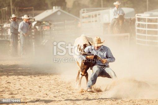 istock Cowboy Lifestyle in Utah 845376444