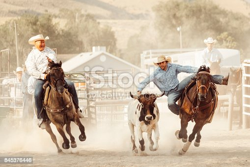 istock Cowboy Lifestyle in Utah 845376446