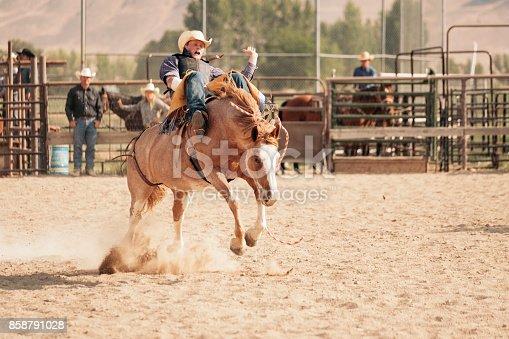 istock Cowboy Lifestyle in Utah 858791028