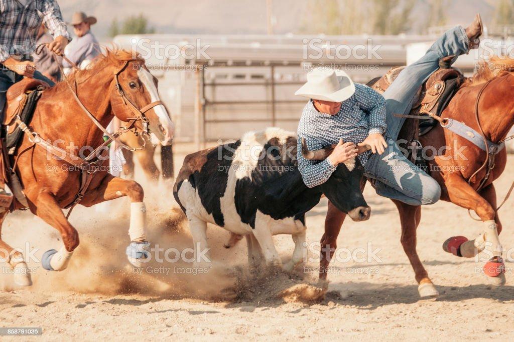Cowboy Lifestyle in Utah royalty-free stock photo