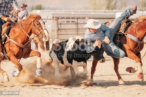 istock Cowboy Lifestyle in Utah 858791036