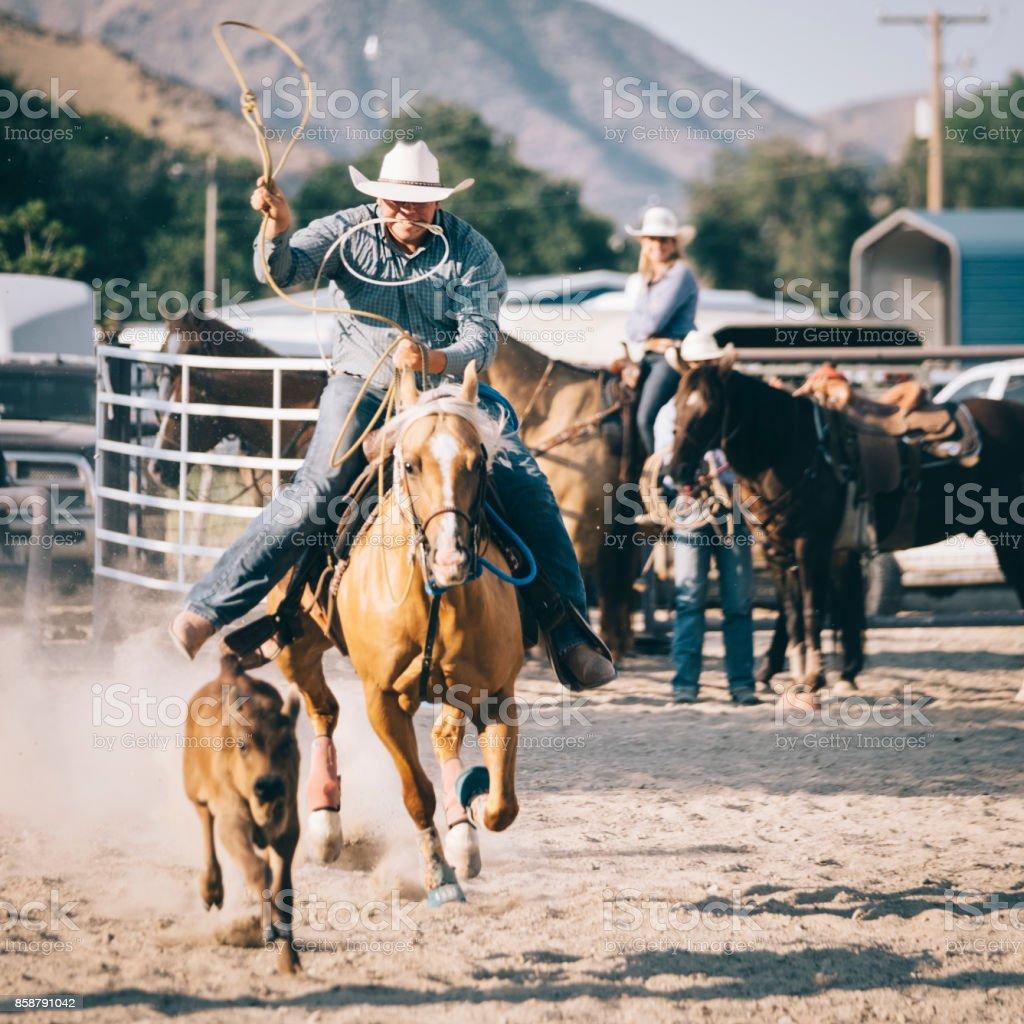 Cowboy Lifestyle in Utah stock photo