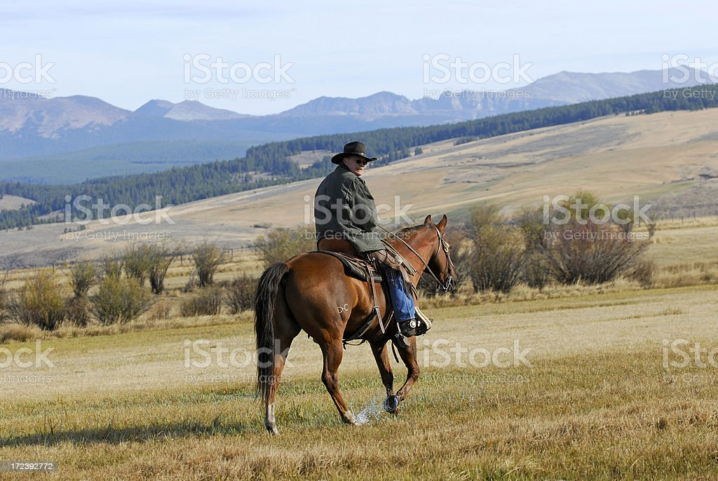 Cowboy Looking Back royalty-free stock photo