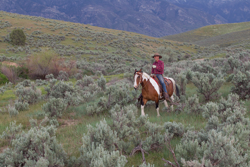 cowboy near mount nebo in santaquin valley near Salt lake City SLC Utah USA