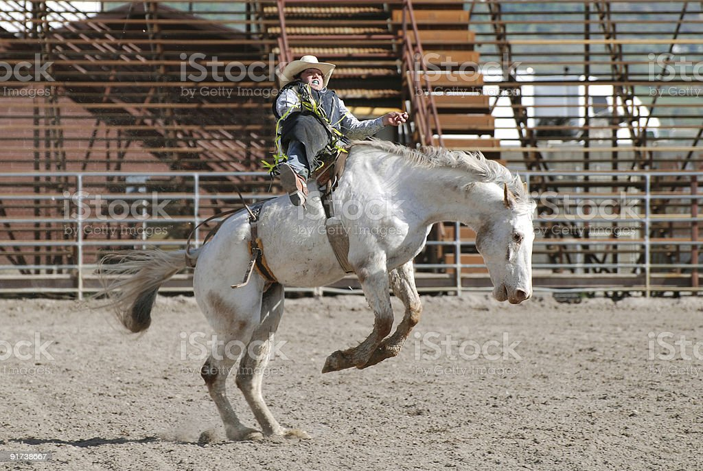 Cowboy on Bucking Bronc stock photo