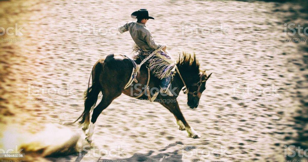 Cowboy on Bucking Bronco Horse stock photo