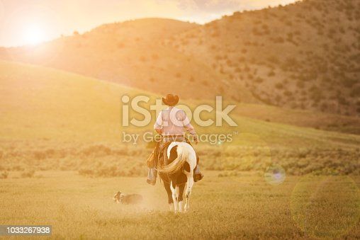 Cowboy on horse, dust. Real people. With dog