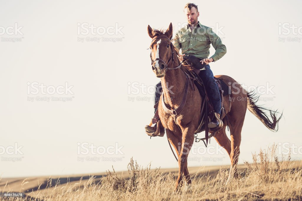 Cowboy On Horseback stock photo