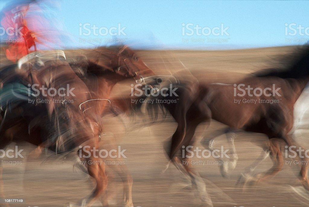 Cowboy on Horseback, Running, Herding, Teamwork, Motion royalty-free stock photo