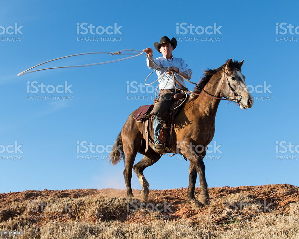 Cowboy on horseback throwing lasso stock photo