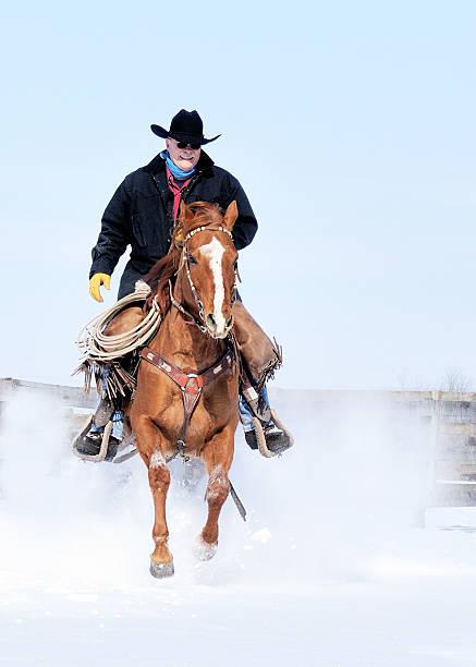 Cowboy on Quarter Horse Galloping thru Snow stock photo