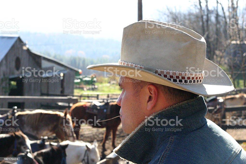 Cowboy on Ranch I stock photo