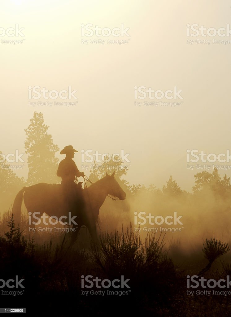Cowboy on the Ranch stock photo