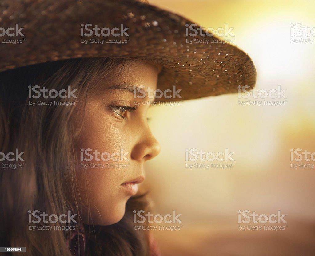 Cowboy. royalty-free stock photo