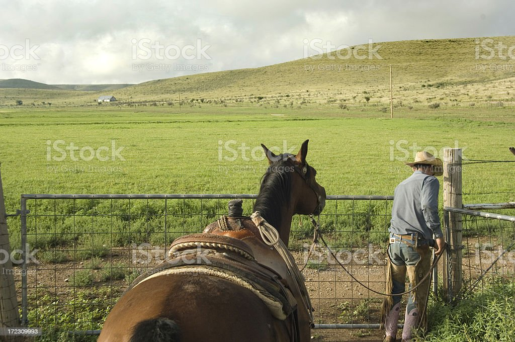 Cowboy royalty-free stock photo