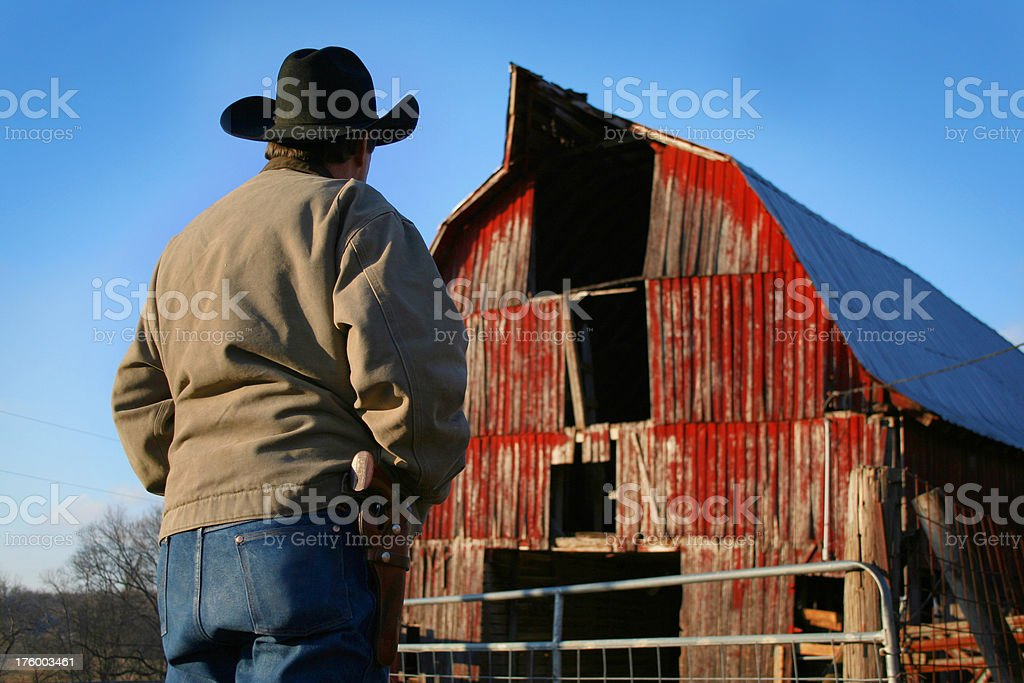 100% Cowboy royalty-free stock photo