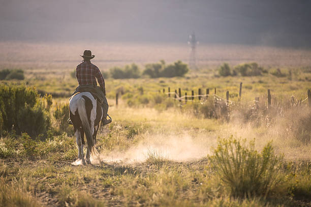 Cowboy Cowboys riding a horse over the mountains ranch stock pictures, royalty-free photos & images