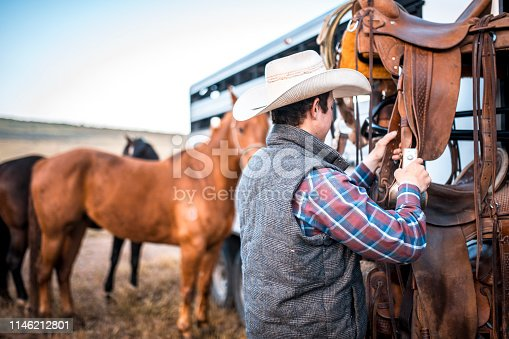 Young horseman preparing to saddle horses tied to a trailer.