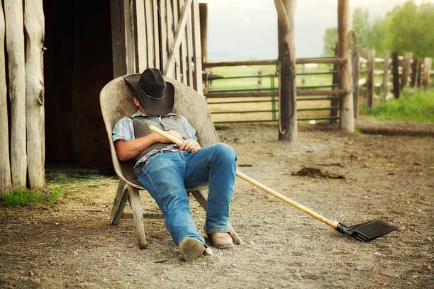 cowboy ruhen in schubkarre volle länge - traumscheune stock-fotos und bilder