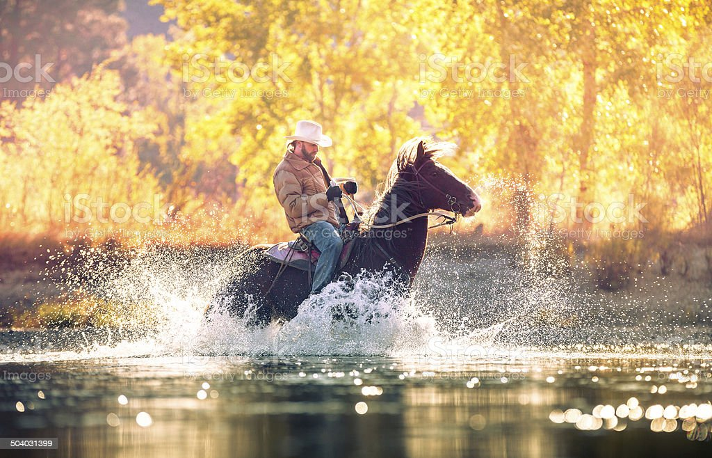 Cowboy rides horse through river on beautiful sunny fall morning stock photo