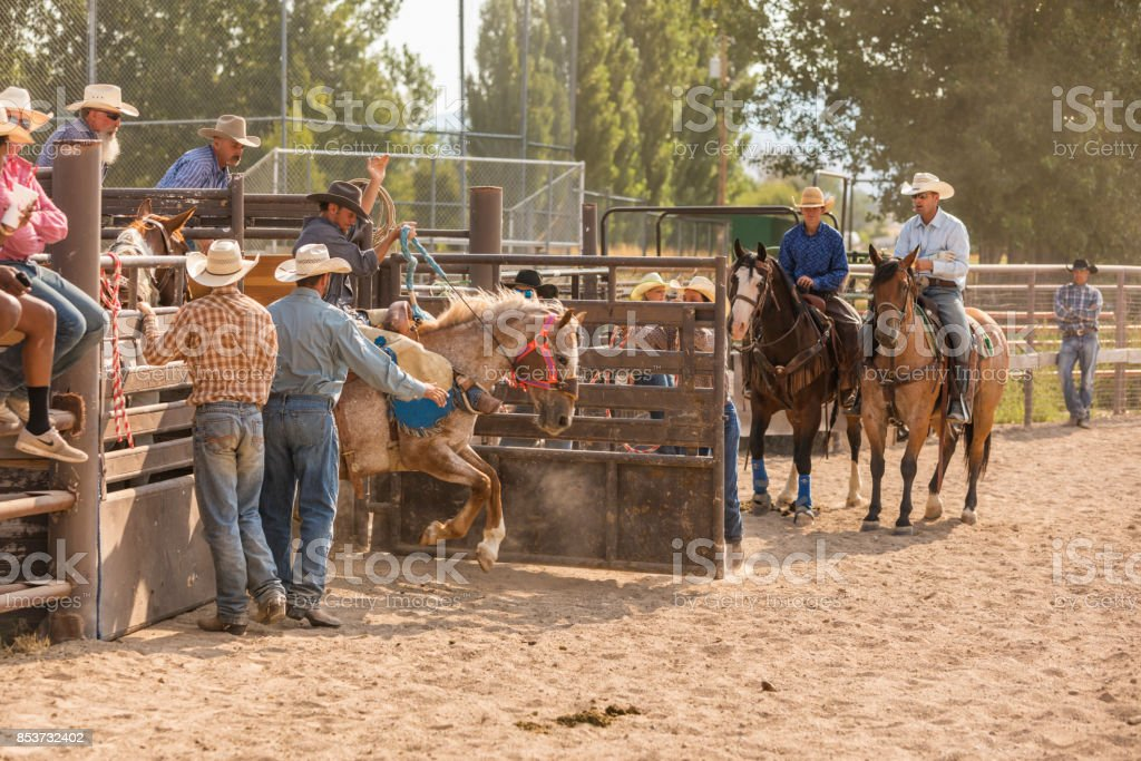 Cowboy Riding a Bucking Bronco at a Rodeo stock photo