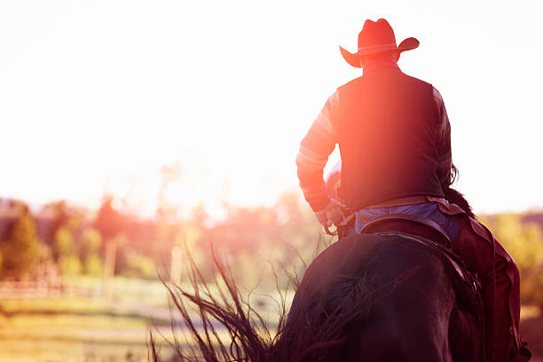 Cowboy riding away rear view Rear view of cowboy riding away. Strong flare from the low morning sun. rancher stock pictures, royalty-free photos & images