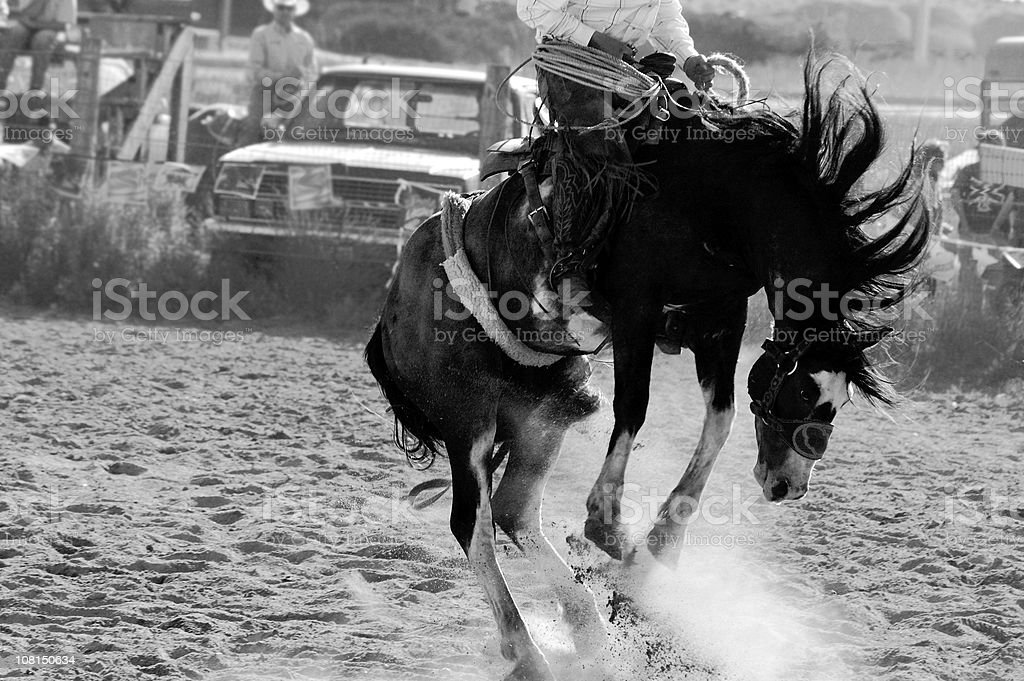 Cowboy Riding Bucking Horse, Black and White stock photo